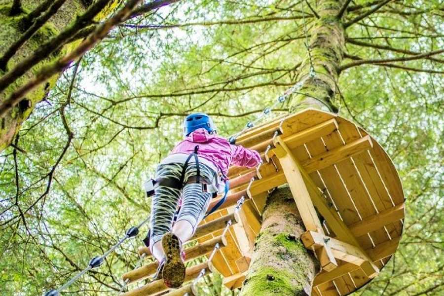 Norway Insight Høyt & Lavt Climbing Park
