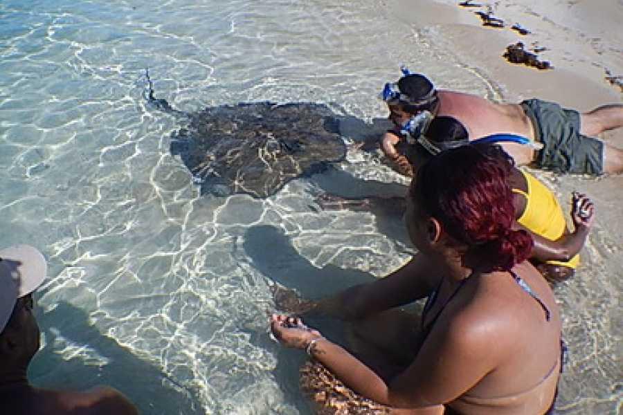 TheRealBahamas LLC Grand Bahama - Half Day Stingray & Reef Fishing: West End Ecology Tour