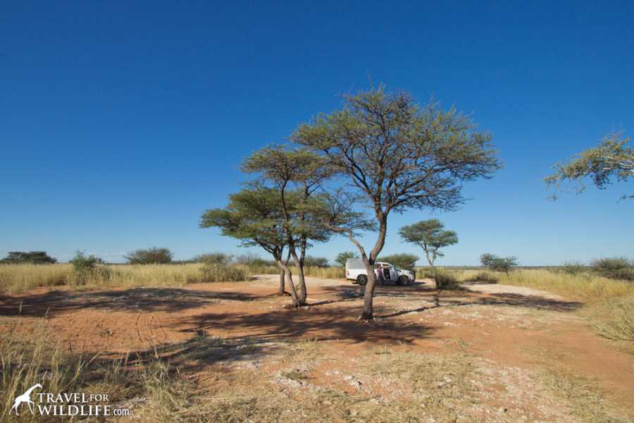 e-Tourism t/a SimplyTravel Camping in Mabuasehube National Park