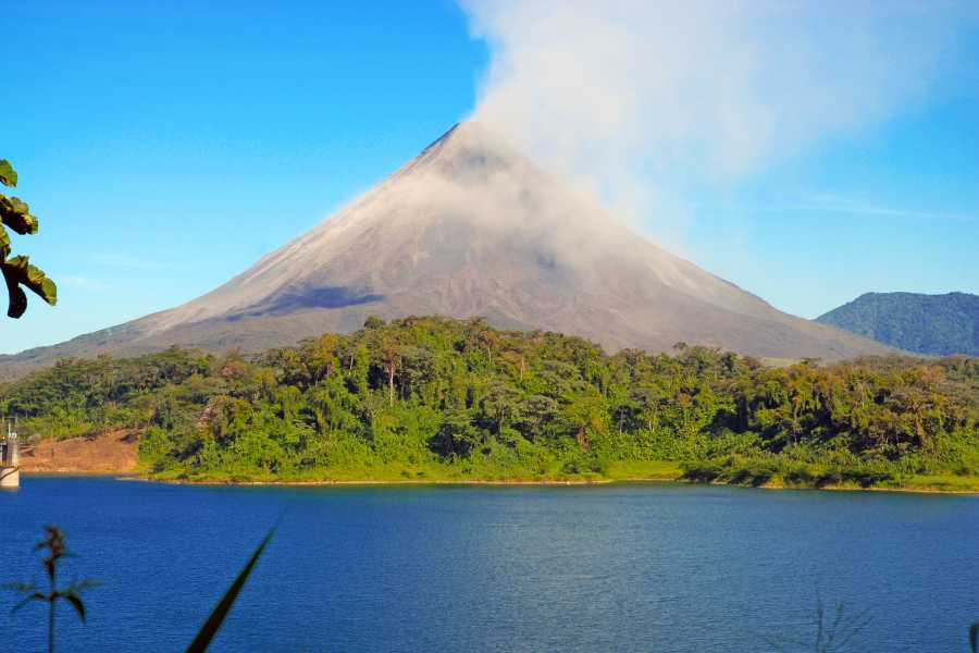 Tour Guanacaste Arenal Sloth Discovery Trip