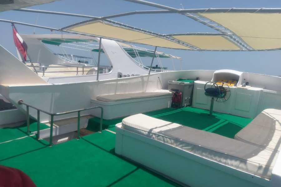 Excursies Egypte Prive boot huren naar het dolfijnen huis vanuit Hurghada