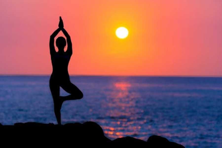 Outdooraction Yoga with Mona