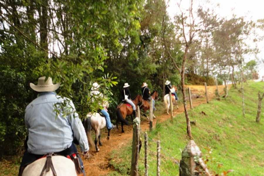 Medellin City Services FUN HORSE RIDES NEAR BOGOTA