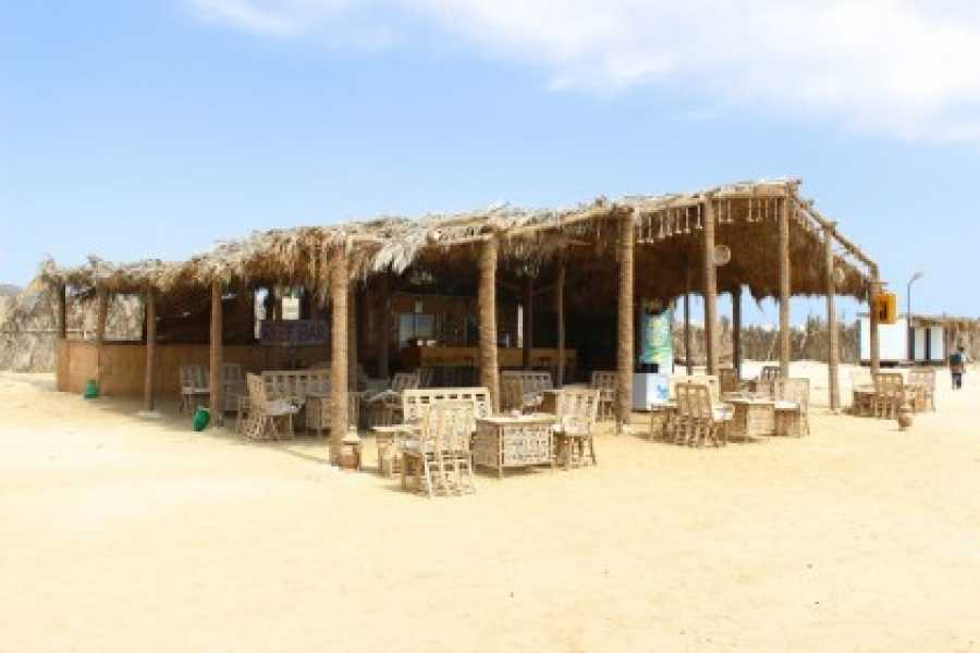 Excursies Egypte Abu Dabab trip tour from  Marsa Alam