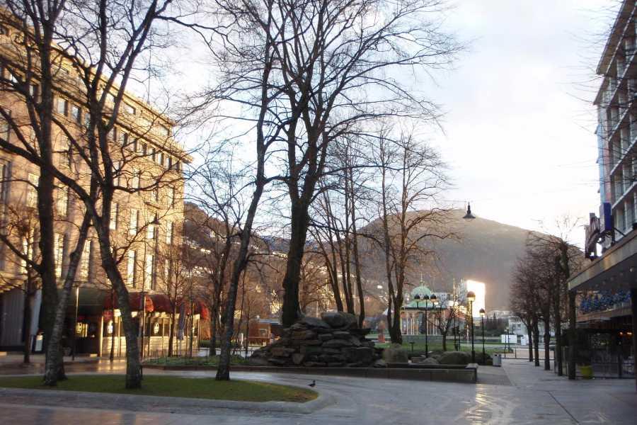 Mi Casa Tu Casa Tours Bergen Walking Tour - 3h