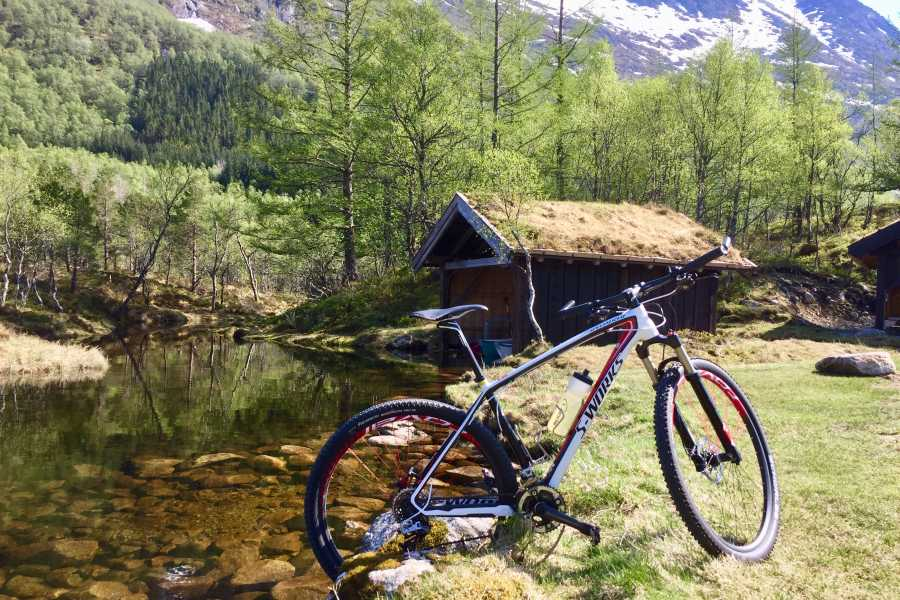 rosendalevent DOWNHILL CYCLING FROM MOUNTAIN TO THE FJORD