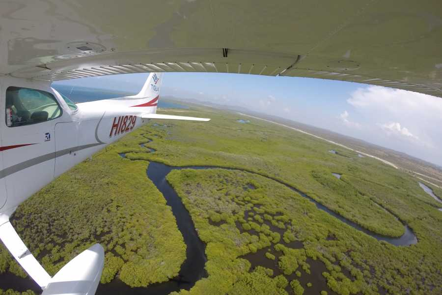 Tigua Aerotours S.R.L. MonteCristi and the Mangrove Swamps