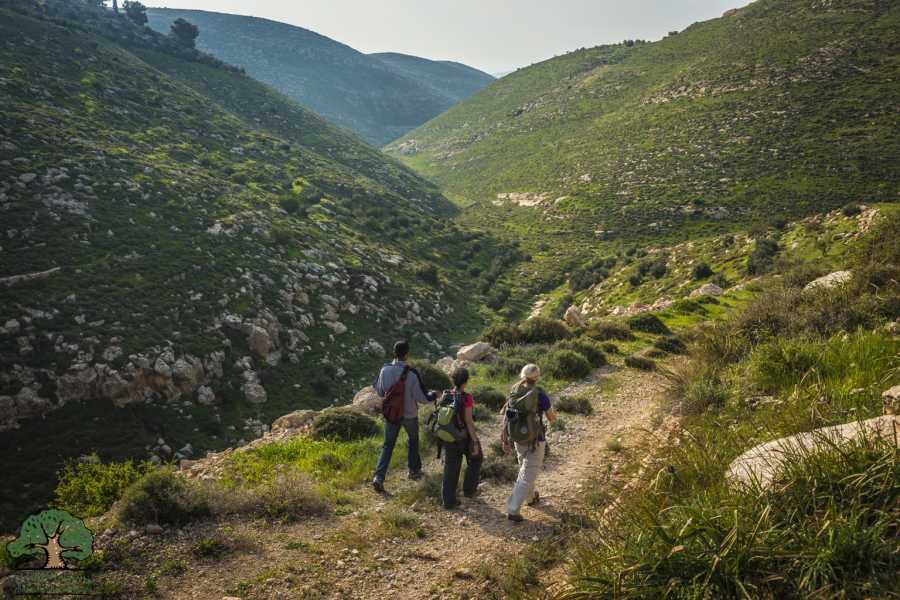 Siraj Center 19 - 25 March 2021, Tuqua to Beit Mirsim, Spring Thru-Hike 2021