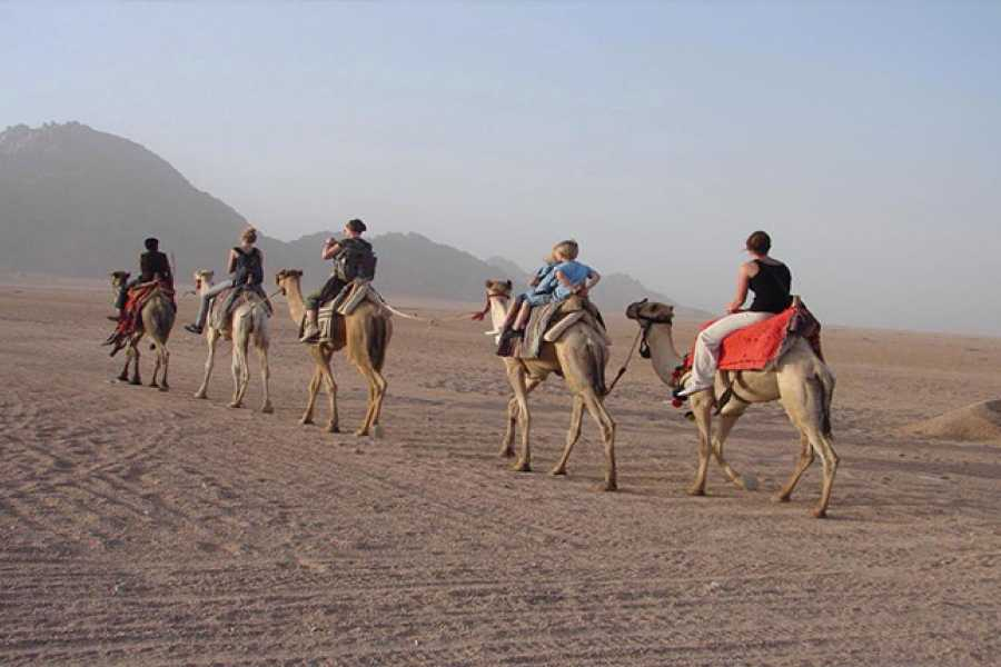 Excursies Egypte Super Safari au départ d'El Gouna