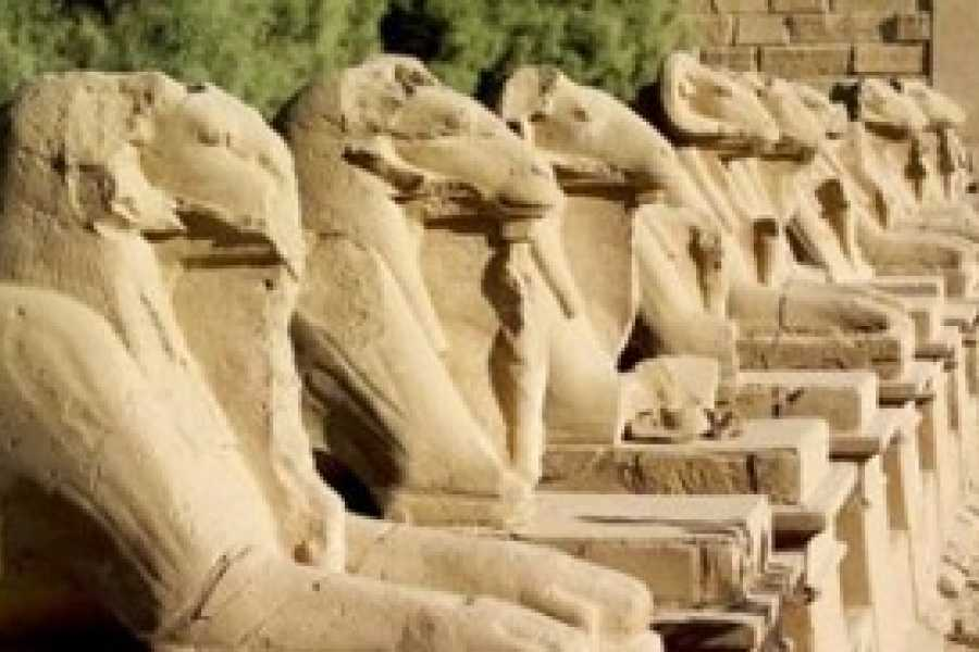 Excursies Egypte Cairo and Luxor two days from Marsa Alam