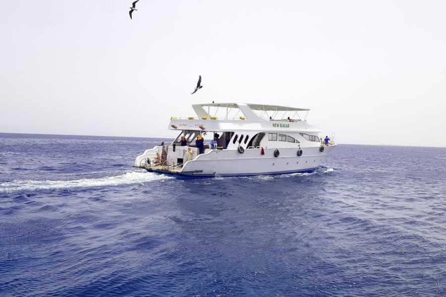 Excursies Egypte Utopia Island snorkeling tour from Hurghada