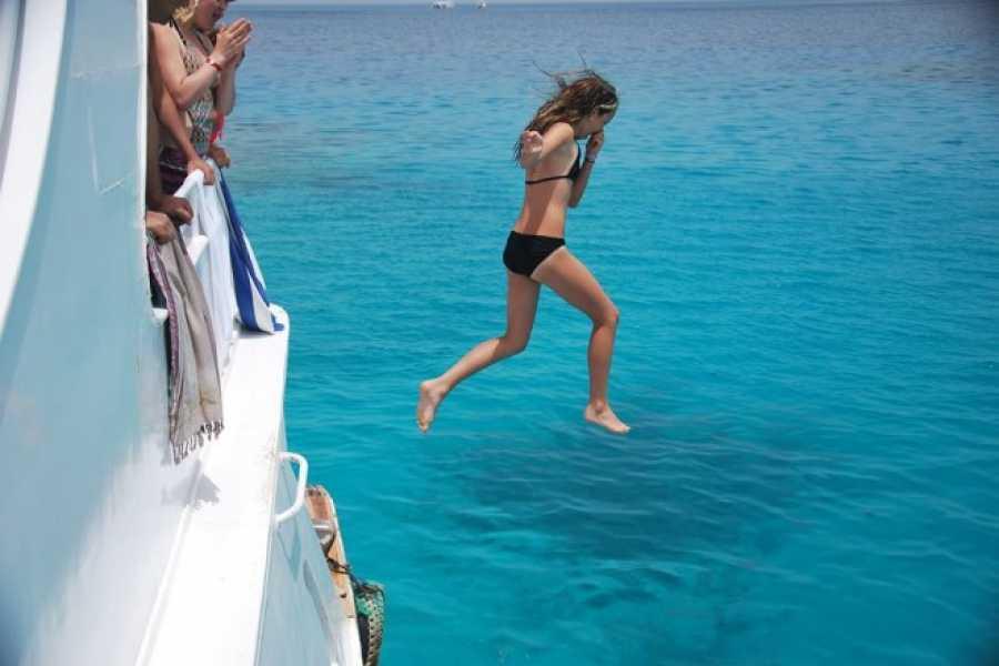 Excursies Egypte 6 heures de plongée avec les dauphins depuis Makadi