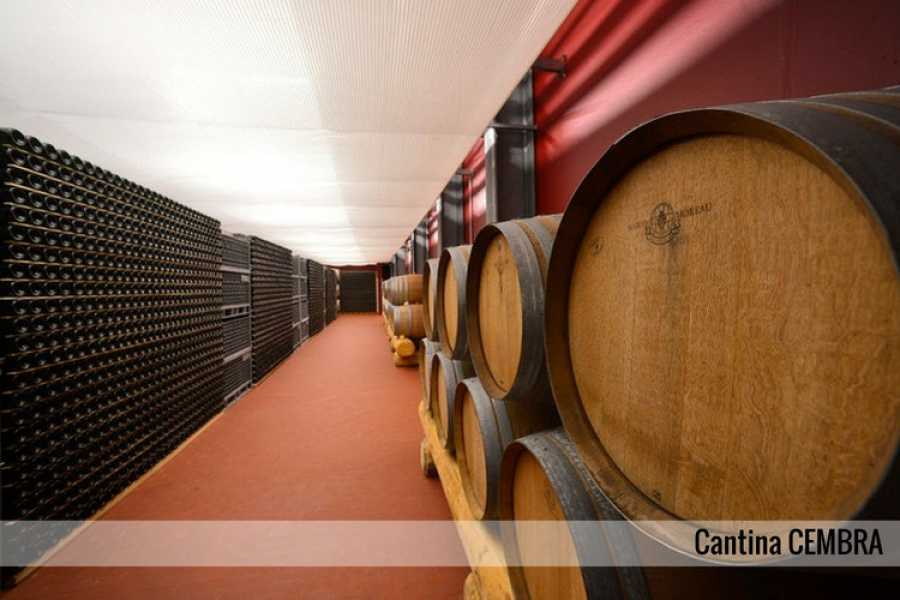 Enjoy33 Val di Cembra Wine Tour