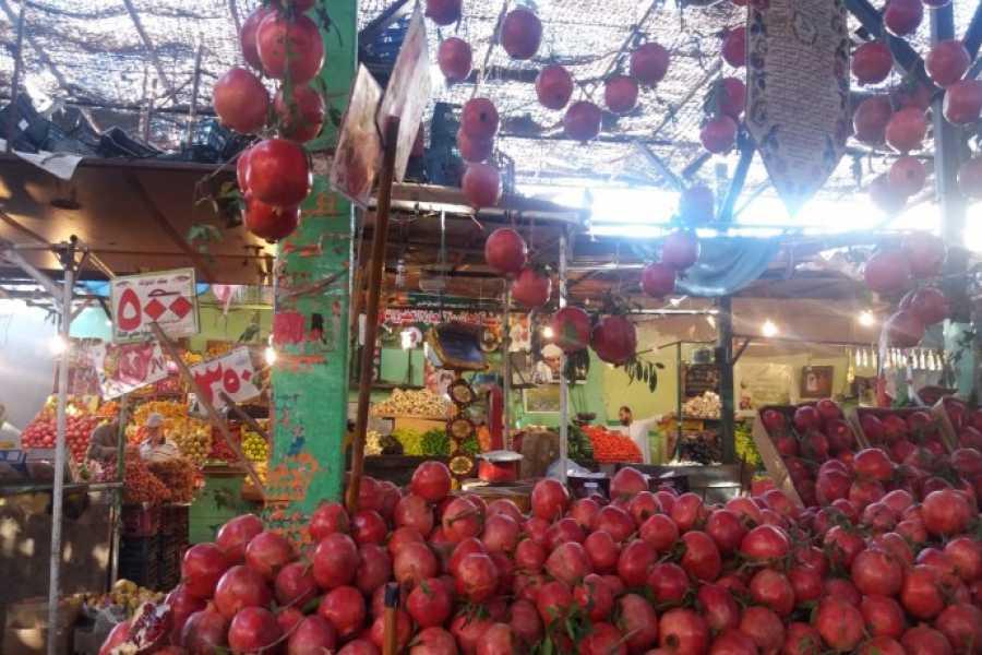 Excursies Egypte Hurghada City depuis EL Gouna