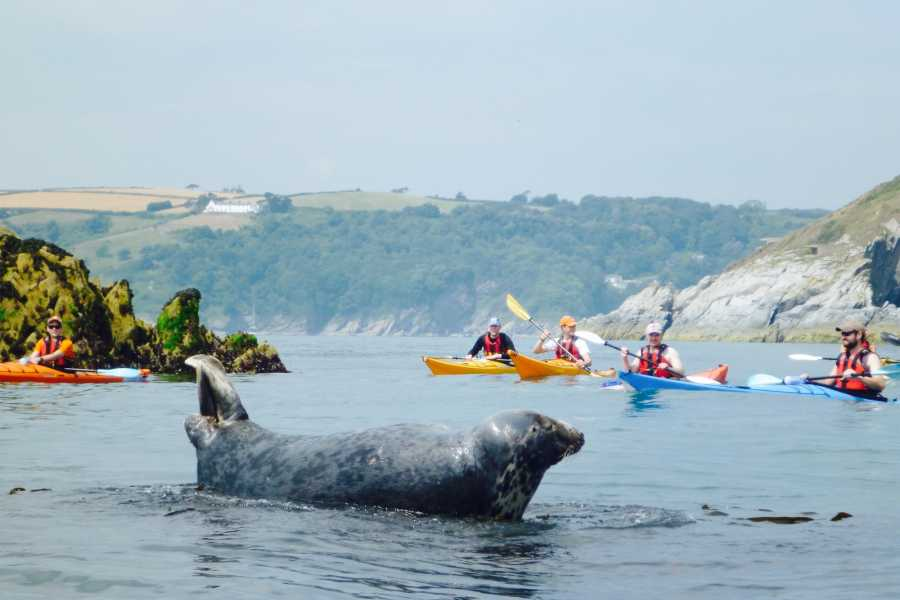 Sea Kayak Devon Ltd -Young Family Full Day- (kids 12 & under)