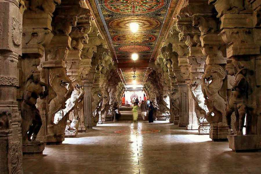 Walkbout International LLC Culture & History - India: Glimpse of South India - 13 Days