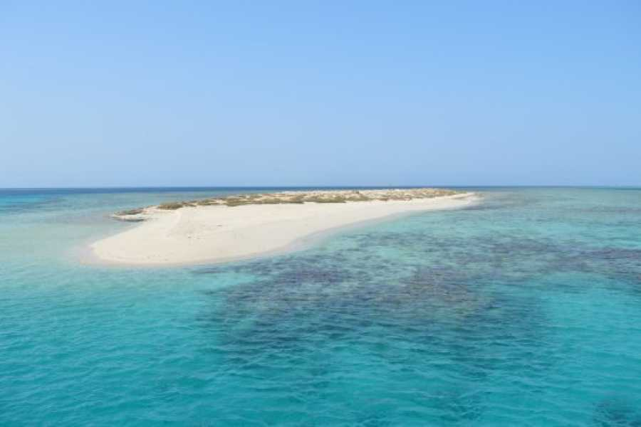 Marsa alam tours Marsa Alam and Aswan Tour Package