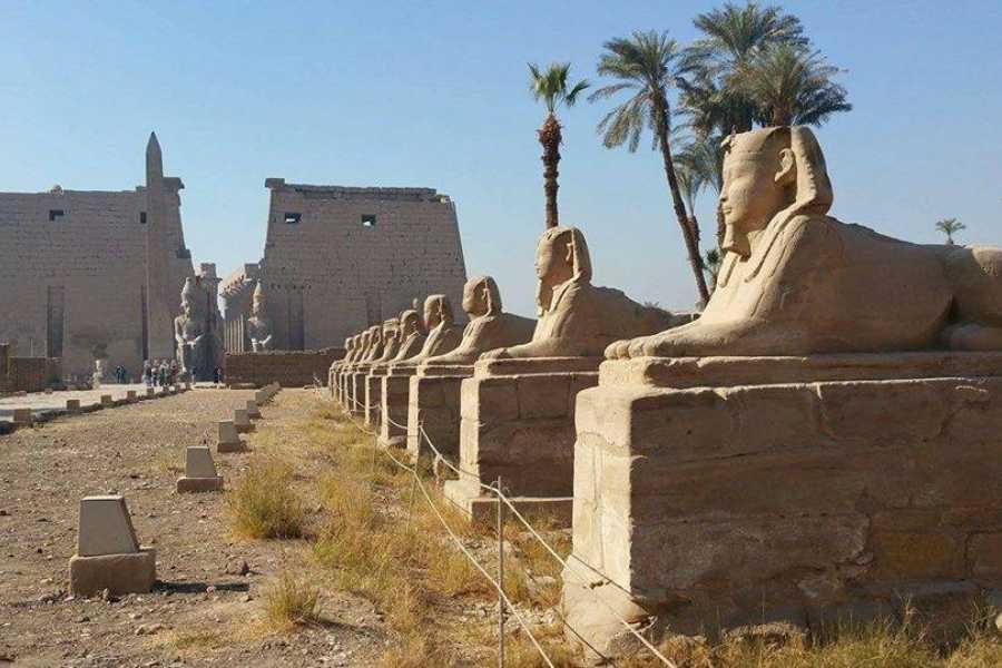 Excursies Egypte Luxor en Dendera dag excursie vanuit Hurghada met Prive busje