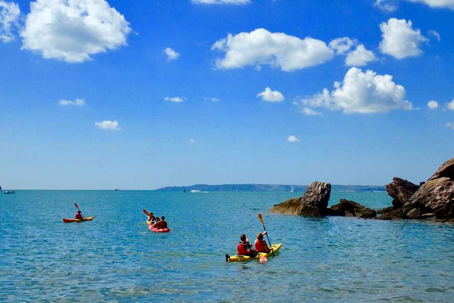 Sea Kayak Devon Ltd Paddle Board (Half Day Trip)