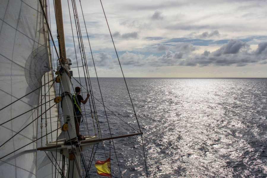 Maybe Sailing Arctic Summer Adventure
