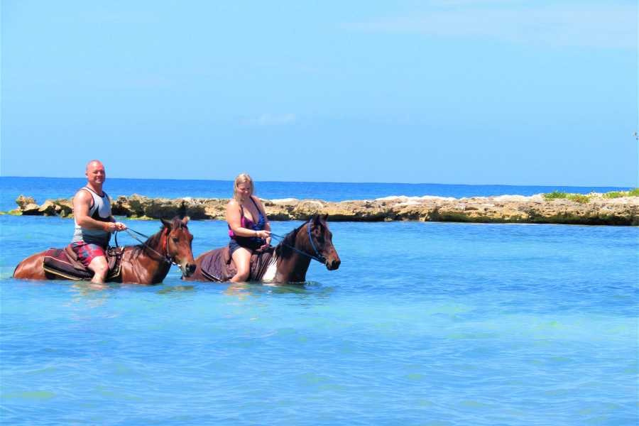 Jamwest Motorsports and Adventure Park Combo - Zipline + Horse Back - Jamaica ID Required