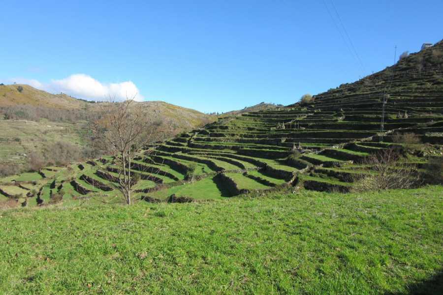 Gerês Holidays Tour: Sistelo 1 Dia