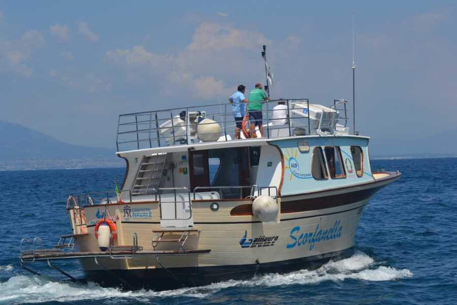 Travel etc Positano & Marine Park Experience