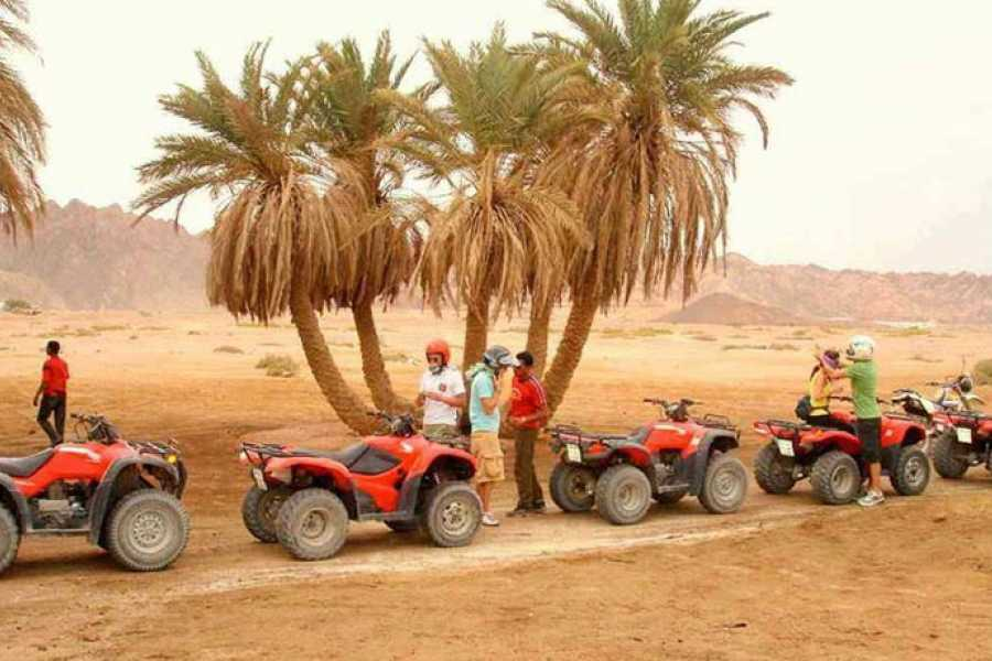 Excursies Egypte Super Quad Biking au départ de Marsa Alam