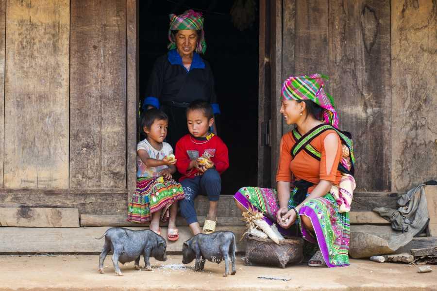 Viet Ventures Co., Ltd Hà Nội - Sapa - Fansipan - Tràng An - Bái Đính - Hạ Long 4 ngày tour