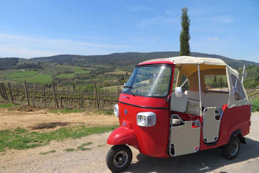 Italy on a Budget tours ROMANTIC TUSCANY GETAWAY - 5D/4N ( April - Oct )