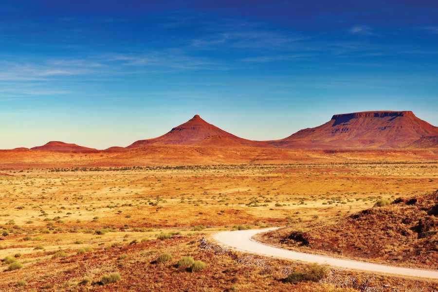 Graffiti Sotto la Lente Namibia - Best of Namibia