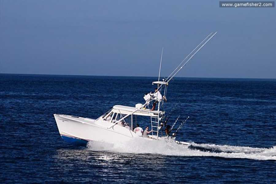 Krain Concierges Offshore Pro Sport Fishing Charters
