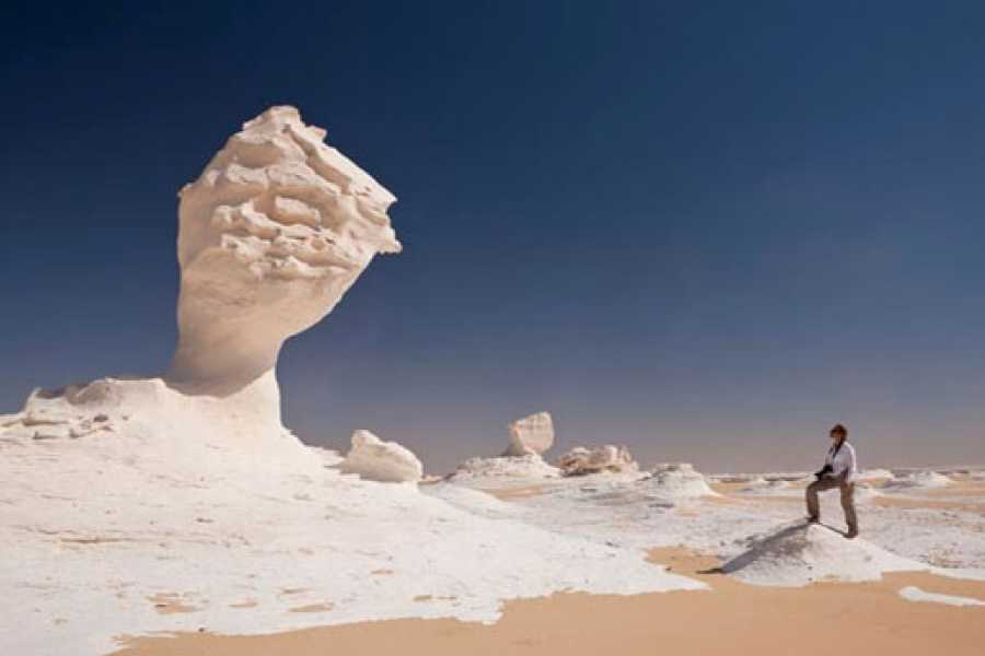 Excursies Egypte One Night Camping in White Deserts from Cairo