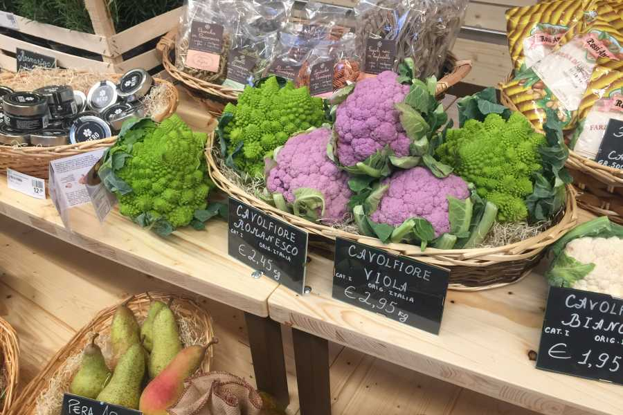 Italy on a Budget tours Bologna & FICO Eataly World day tour