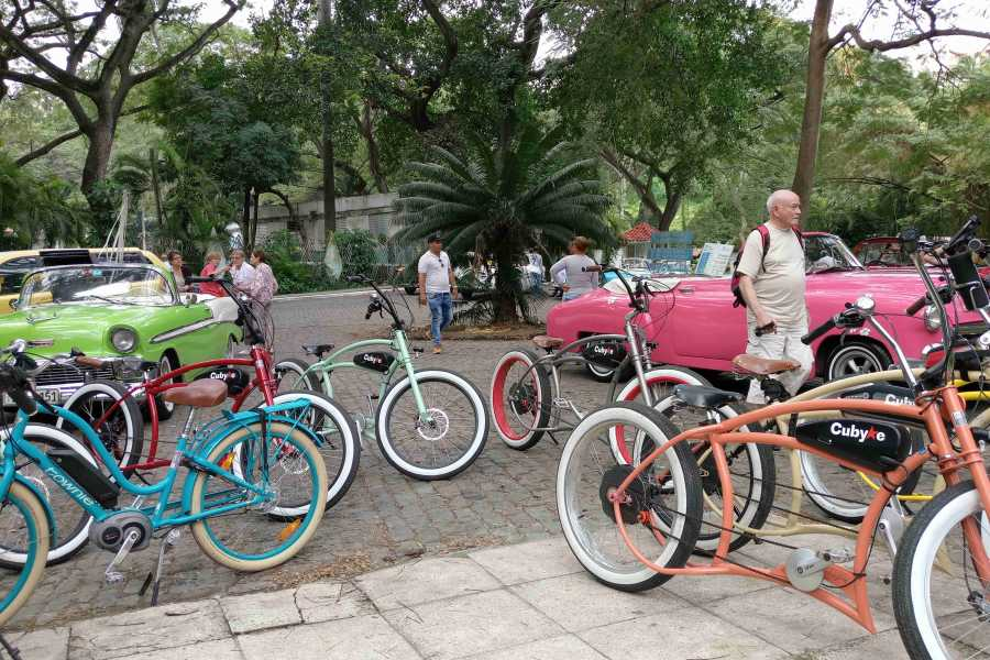 Cubyke Travel Little star of Havana