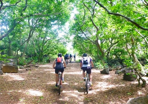 Mountain Biking Macchabee Forest - Adventurous trail while in Mauritius