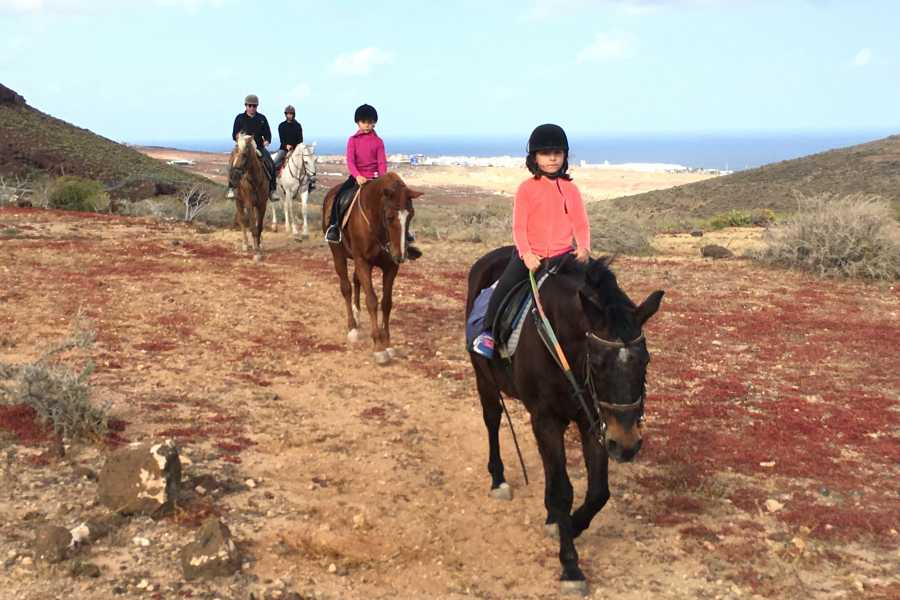 Hipica Canaria 1 Hour Tour: Countryside!