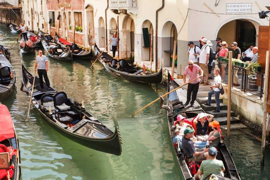 Venice Tours srl Grand Canal gondola ride and discover Venice (skip the line)!