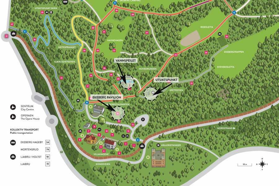 Ekebergparken 23.09.18: Japansk teseremoni - Vannspeilet