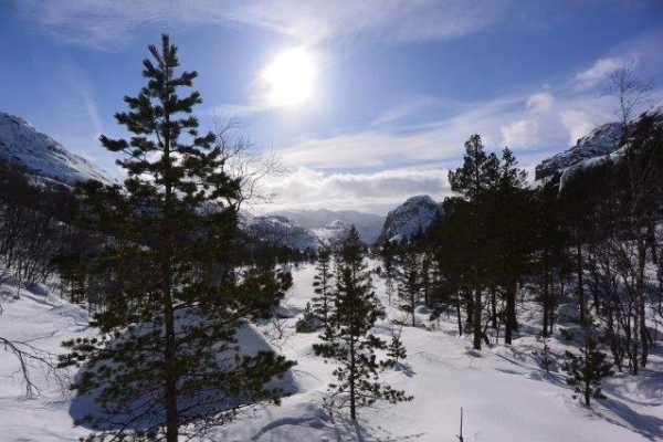 2-day Fjord & Mountain Snowshoe Trek