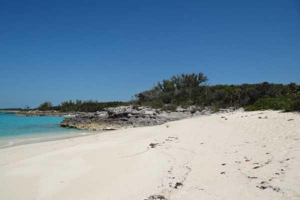 42' Meridian Sedan Yacht - Full Day all inclusive Beach Charter