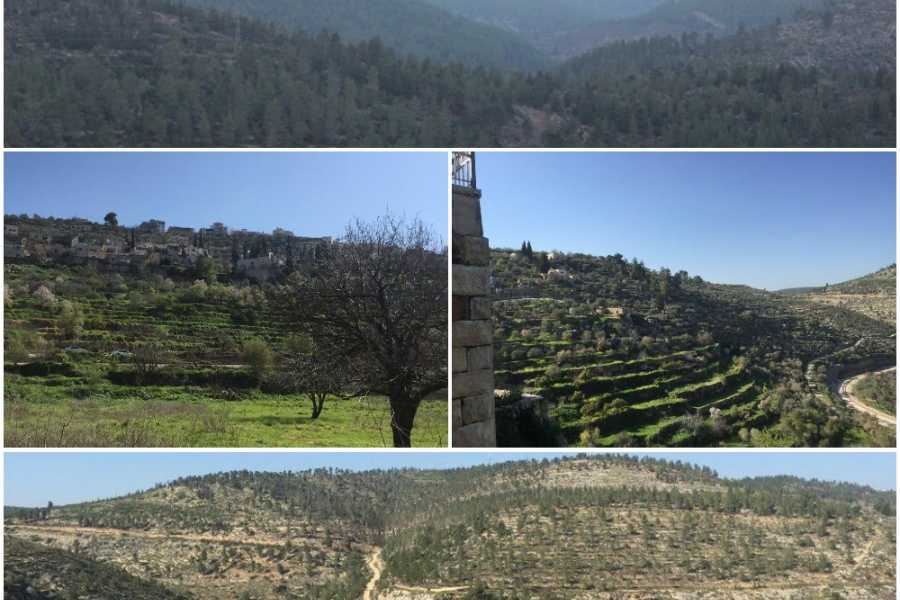 Siraj Center Every Monday - Makhrour to Battir