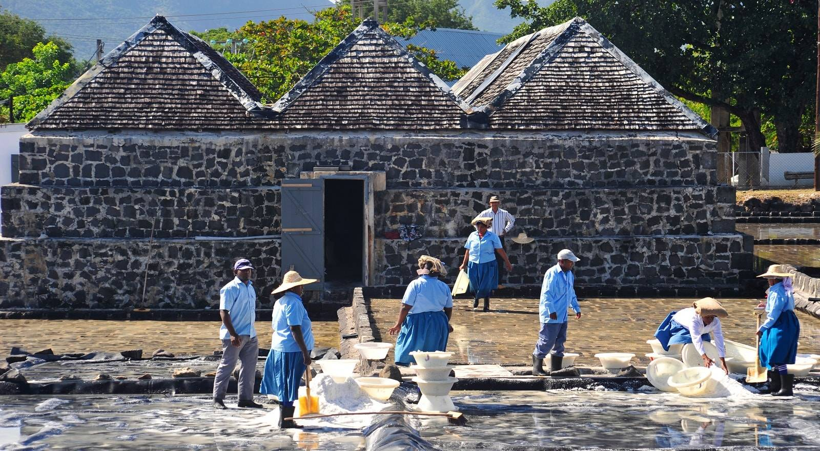 The Tamarin Salt Pans - Oldest salt farm in Mauritius