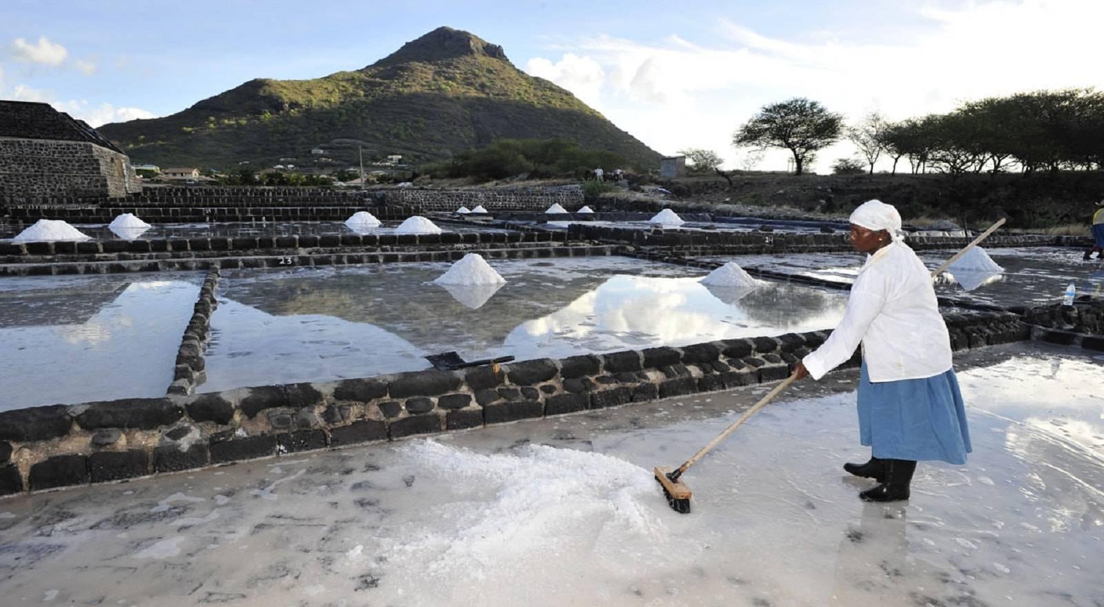 Die Tamarin Salzbecken