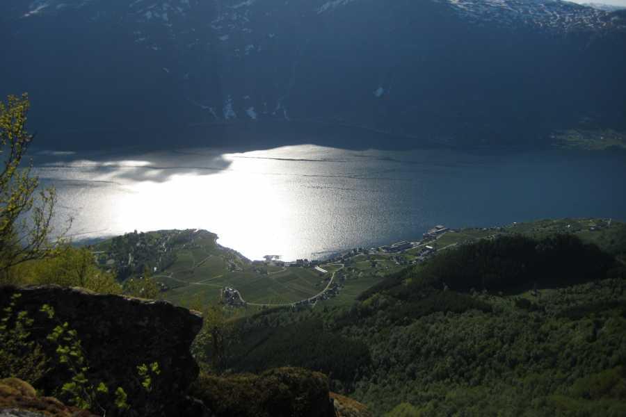 Stana Gard Dronningstien mellom Kinsarvik og Lofthus