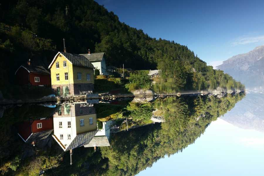 Stana Gard Yellow house Same price always Up! Norway   (As activity)