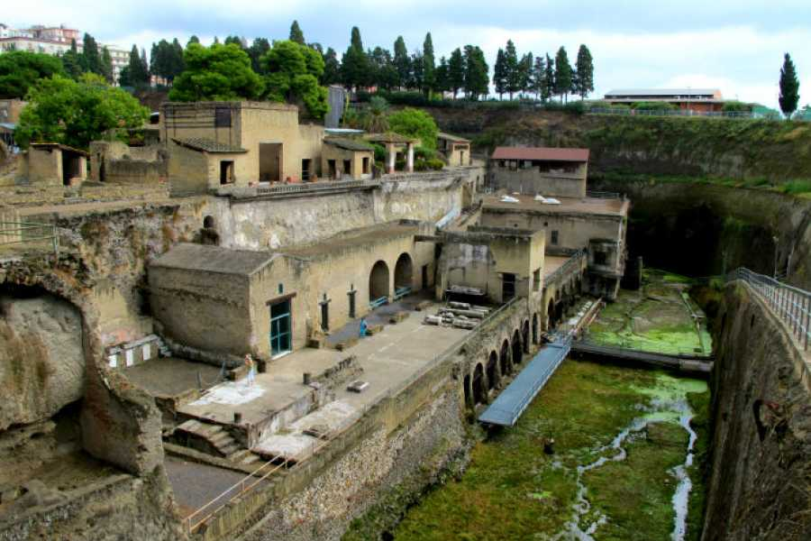 Di Nocera Service 2 Hrs professional and private guided tour in Ercolano