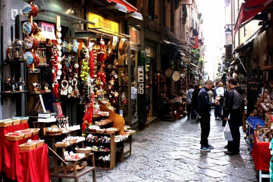 Di Nocera Service Private Guide Naples full day 8 hours