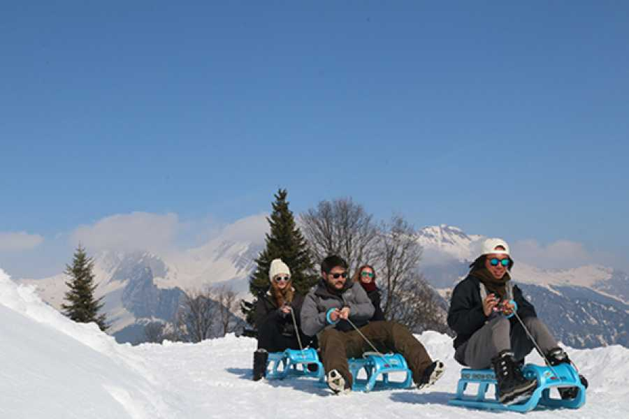 Outdoor Interlaken AG 알프스 눈썰매 (Day Sledding)