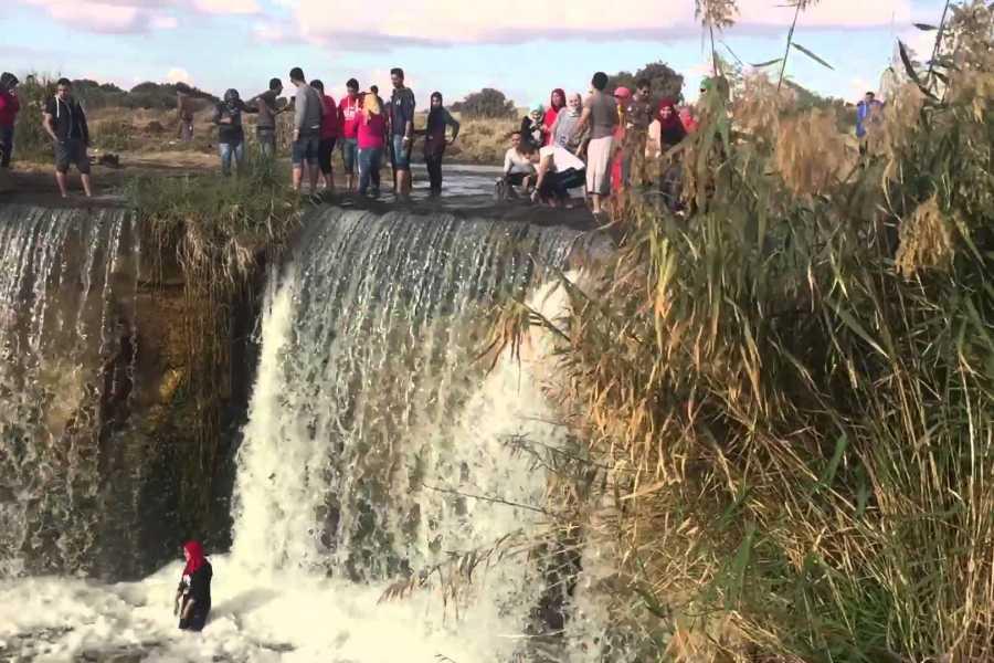 Excursies Egypte Fayoum Oasis & Wadi Al Rian Day Tour from Cairo
